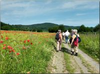 Eifel01_Auf_dem_Weg_nach_Maria_Laach